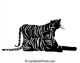 Tigers - Illustration of wild animal, family of cats