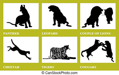 Wild cats - Vector silhouette of wild cats, family of cats