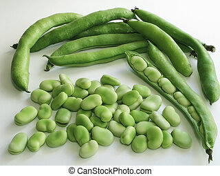 Broad Bean - Close-up of broad beans and few pods
