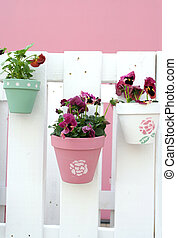 pansy\\\'s decoration