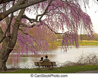 Spring Brake - A couple relax and enjoy the beautiful Spring...