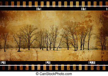 grunge trees - grunge film photo toned f/x, made from my...
