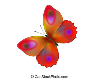 beautiful butterfly - The beautiful butterfly with...