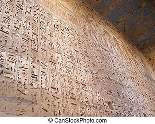 Detail of the hieroglyphs on a large wall of the Ramses...