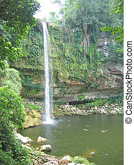 High watefall with the jungle around, Misol Ha, Mexico -...
