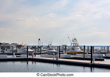 Marina - Sport boats at the Indian River Inlet Marina in...