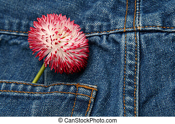 Spring fashion - Blue jeans trousers and big pink daisy