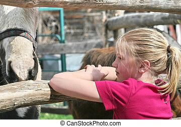girl looking at horses