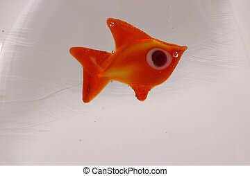 Glass Fish - A glass fish incrusted into a solid block of...
