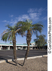 Shopping Center - Palms and Arizona Small Business Offices...