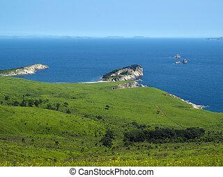 seaside meadow coast landscape