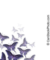 Butterfly Pattern - Image from an original 85x11 decorative...