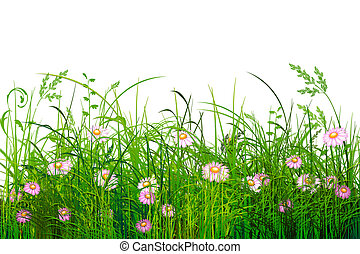 Green grass with flowers - Illustrated green grass with...