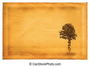 old paper with tree - old paper page with lonely tree motive...