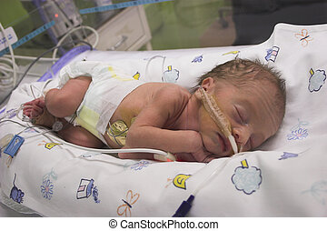 Baby - baby boy in intensive care only one day old