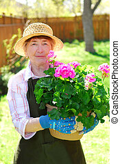 Retired gardener - Senior woman holding a pot with flowers...