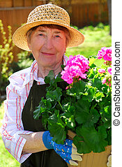 Senior woman gardening - Attractive senior woman holding a...
