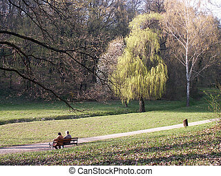Park couple - Romantic scenery from the public park in...