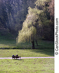 park couple - Couple seat on the nice spring sun