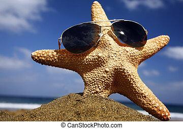 Beach Starfish with Shades