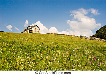 Swiss Prairie