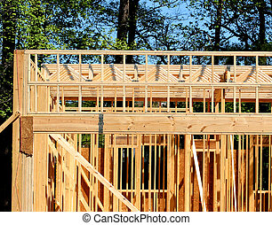 Joists and Trusses - A housing or apartment project under...