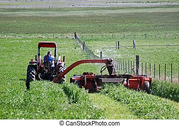 Cutting hay near fence - A tractor cutting hay near a fence.