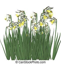 Spring Flowers 3D