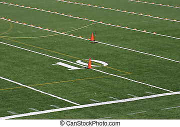 Playing Field - Number ten yard line on a green field