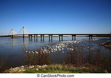 Bridge,Over Mississippi - Bridge Over Mississippi River with...