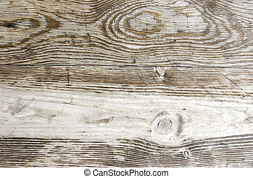 Wood texture - A detail of wood texture