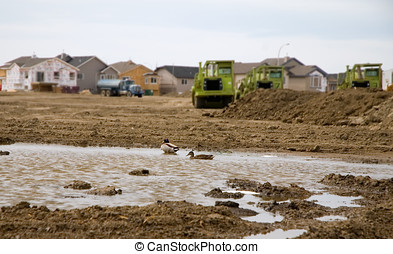Loss of Habitat - Residential development resulting in the...