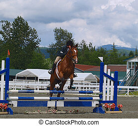 Power - horse and rider taking jump in local show jumping...