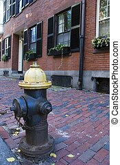 Fire Hydrant in the Beacon Hill area of Boston