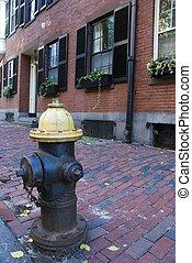 Fire Hydrant in the Beacon Hill area of Boston