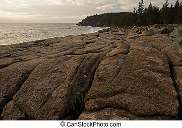 Rocky Shore, Acadia Nat Park, ME - Early Light on Rocky...