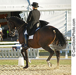 Dressage Competitor - A black horse competing in a dressage...