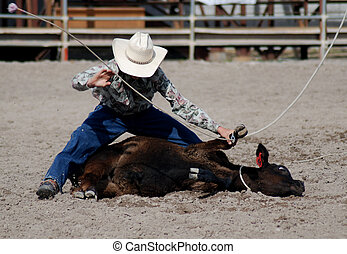 Cowboy roping calf on ground in competition.