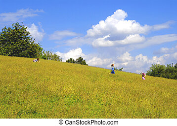 Kids playing on the meadow, childhood, fun, season, nature,...