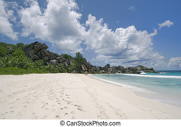 Tropical white sand beach, La Digue Island, Seychelles - La...