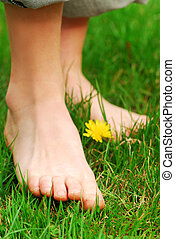 Barefoot - Closeup on young girls bare feet in green grass...