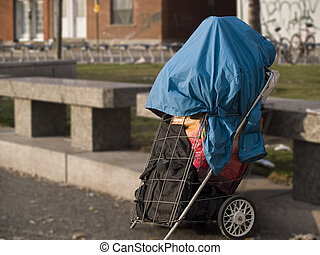 Net Worth - Poverty - Shopping cart containing the...