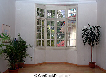 bay window with decorative life plant