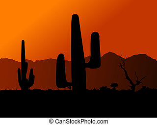 Cactus in desert on a background of an orange decline...