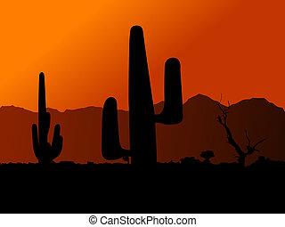 Cactus in desert on a background of an orange decline...
