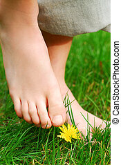 Barefoot - Closeup on child\\\'s bare feet in green grass