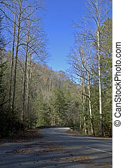 Tremont, Road, Great Smokies NP, TN - Tremont, Road, Great...