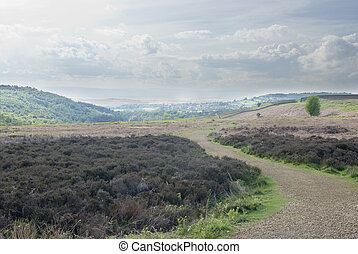 The York moors walking track