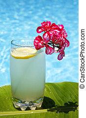 sommer, limonade