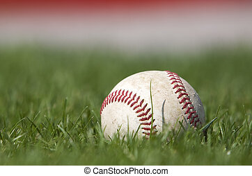Baseball on the field - A baseball sitting in the grass...